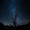 34% funded. Help fund the book (Tanner Wendell Stewart) Tags: nightphotography night stars tanner 365 startrails 3635 365project todaymightbe 365dailyphoto 3652013 shoottheskies tannerwendellstewart tannerwendell shoottheskies2013 3652013shoottheskies