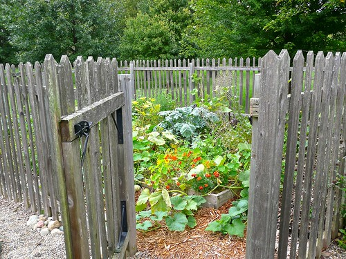 5F, Fenced, raised bed garden at  Sherwood Forest Court