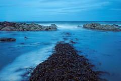 Ballantrae coast (Tony Dandridge) Tags: ocean longexposure sea seascape seaweed water coast scotland rocks scottish kelp coastline ballantrae oceanscape