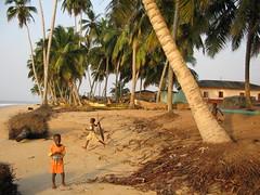 "Brenu Beach Kids • <a style=""font-size:0.8em;"" href=""http://www.flickr.com/photos/125032427@N07/15883098883/"" target=""_blank"">View on Flickr</a>"