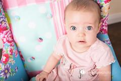 4 Months Old (mrsm_jones) Tags: old pink baby cute girl studio photography jones chair pretty child purple quilt sweet turtle 4 michelle australia perth western wa months patchwork prop throw hopwood