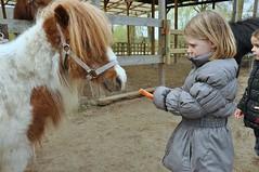 20160418 pony rijden leefgroep1 SP_00059 (leefschool) Tags: pony rijden leefgroep1 20160418