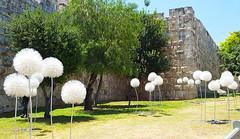 jerusalem-20160525_115527 (WebsThatSell) Tags: israel jerusalem