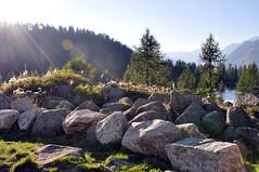 Rocks'n'lights (parismargherita) Tags: rocks mountain italy nikon sun green lake trees grey wood