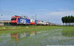 E484 005 SR (MattiaDeambrogio) Tags: train rotterdam italia trains sbb cargo ii domo 005 sr treno timo tec treni domodossola mortara e484 shuttlewise sbbci