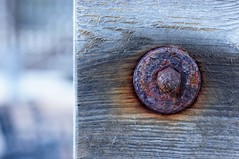 Rust & Wood / Rost & Holz (bernhard.friess) Tags: sony alpha nex5n emount canonfd vintage klassisch prime lens best 85mm 18 canon85mm118fd fdnex manuelle fotografie manualfocus light licht badkreuznach rheinlandpfalz rheinhessen pfalz deutschland germany europe europa grey brown grau braun texture struktur bookeh scharfunscharf onofffocus natur nature garten garden uncropped original genuine art kunst bernhard friess explore entdecken popular interesting interessant spring frhling mrz march