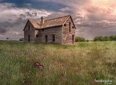 Out Back (Pat Kavanagh) Tags: canada abandoned farmhouse landscapes farm leader homestead saskatchewan vetorama