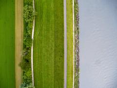 Rheinufer (MURUCUTU) Tags: river schweiz switzerland li suisse suiza 4 wiese suia gras liechtenstein phantom svizzera ufer fluss rhein weg rheinufer schaan buchs phantom4 dji murucutu