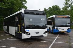 11.06.2016 (III); 50 jaar standaardbus (chriswesterduin) Tags: hbm htm