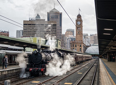 """2016-05-28 LVR 5917 Central 8S81 (Dean """"O305"""" Jones) Tags: winter heritage station train highlands picnic au transport central sydney railway australia steam southern valley nsw lachlan robertson the lvr 8s81 thnsw"""