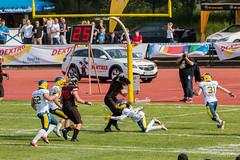 GFL-2016-Panther-9899.jpg (sgh-fotos) Tags: football nfl bowl german panthers sack dsseldorf touchdown defence invaders hildesheim dline fumble gfl amarican quaterback oline interception ofence