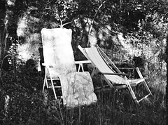 Lounge Chairs on the Edge of The Forest (Mister.Marken) Tags: 645 trix kodaktrix loungechair mamiyam645 m645