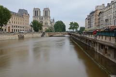 Les quais de Notre-Dame (Nijule) Tags: paris france seine eau notredame crue 2016 bouquiniste poselongue filtrend64