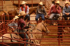 Robo Roper (Get The Flick) Tags: horse cowboys fence rope arena rodeo lariat cowgirl lasso breakawayroping calfroping georgiahighschoolrodeoassociation perrygageorgianationalfairgroundsagricenter