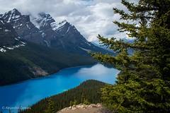 Jasper-1 (cazz_mx) Tags: mountain lake peyto