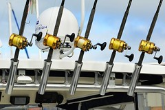 World Export And Import Directory - Global B2B Marketplace by Giuelith Timantti Ltd. www.tradeore.com Fishing Equipment (giuelith_timantti) Tags: travel tourism fashion diamonds silver advertising gold marketing iron steel offshore bank bauxite mining company aid fabric chrome minerals infrastructure copper buy myanmar projects jewelery supplies sell mode import trade economy development swaps materials taconite economicdevelopment cooperation factories seo finance companies export landuse manufacturer manganese purchases zakat funds tanzanite rawmaterials ores mutualfunds businessdirectory holdings suppliers contextualadvertising columbite tradedirectory seoconsultant trademarket corporateservices b2bdirectory supplierdirectory miningdevelopment tradeorecom seoburma ironoreindex companyregister businessregister steelindex sorporation biionaire