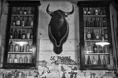 Se Prohibe El Cante (JAIRO BD) Tags: espanha espaa spain sevilla sevilha jbd