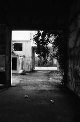 Engelsesteenweg, Doel, OVL (Jickatrap) Tags: blackandwhite film analog 35mm pentax suburbia urbanlandscape  delta400 doel pentaxmz50 bwfilm filmphotography    ilforddelta     newtopographics    photographersontumblr
