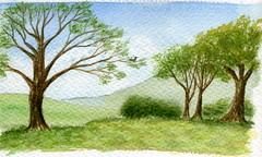 Scne champtre (ybipbip) Tags: watercolor painting landscape paint peinture watercolour acuarela paysage pintura aquarela aquarell acquerello akvarell