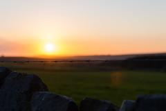 DAN_1091 (dan_c_west) Tags: sunset landscape wire nikon district peak d750 barbed