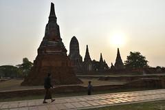 _DSC0337 (lnewman333) Tags: sunset sea river thailand temple seasia southeastasia buddhist unescoworldheritagesite ayuthaya ayutthaya chaophrayariver 1460 watchaiwatthanaram kingprasatthong