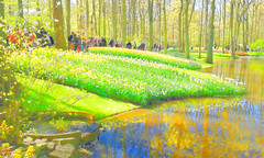 "20160501_111616 ""Fruhling 2016"" Hanna-APS I (APS Lilienthal) Tags: park flowers trees reflection gimp bume spiegelung frhling keukenhof tulpenblte farbexperiment"
