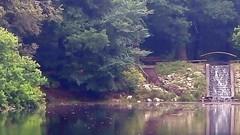 Beekhuizen (Nelis Zevensloot) Tags: petitlac teich pond bosvijver vijver beekhuizen veluwezoom velp natuurmonumenten nationaalparkdeveluwezoom