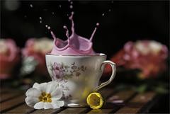 strawberry milk splash. (ASPphotographic) Tags: flowers summer stilllife colour cup milk strawberry splash summery