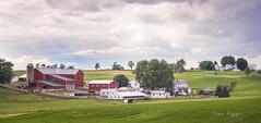 ohio farmland (Dailyville) Tags: homes ohio sky clouds fence outdoor barns farmland amish fields walnutcreek dailyville ohiofoothills