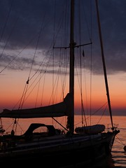 Masts at sunset (GillWilson) Tags: sunset harbour yacht croatia rovinj istria