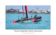 Team Emirates New Zealand_FB (Chris Beard - Images) Tags: new blue sea newzealand cats cup water oracle team nikon sailing yacht great bluewater racing emirates zealand nz catamaran sound bermuda yachts americascup americas foiling greatsound nikond4 ac45