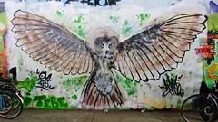 / Keizerviaduct - 19 juni 2016 (Ferdinand 'Ferre' Feys) Tags: streetart graffiti belgium belgique belgi urbanart graff ghent gent gand graffitiart artdelarue urbanarte