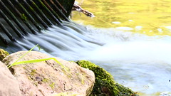 Escape for Time (Branson Rose) Tags: longexposure nature water outdoors moss rocks exposure paint depthoffield drain shutterspeed slowshutterspeed waterrunoff cooleffect