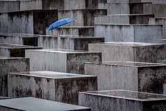 Berlin-1832 (Esther Barry) Tags: berlin germany europe stones concrete holocaust jews rain umbrella blue grey urban cities wet minimal abstract memorials petereisenman pattern monument lines
