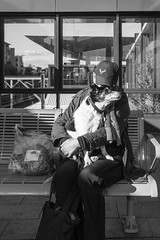 Newtown2016-2 (mekiaus) Tags: dog sony sydney streetphotography australia nsw newtown a6000