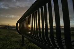 Morning Has Broken (Gray3378) Tags: morning sun grass sunshine wales sunrise river bench dawn south newport dew usk