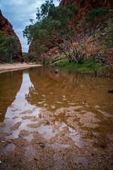 _DSC5799 (Louicio) Tags: sunset red sunrise bush desert alice country central dry australia dirt springs outback