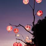 Chinese lanterns thumbnail