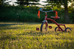 324/365 - Nice Night for a Ride (kate.millerwilson) Tags: evening tricycle radioflyer magichour goldenhour