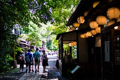 Holiday (Yorkey&Rin) Tags: people holiday japan tokyo sightseeing july olympus chofu rin 2016 jindaiji     em5  sobarestaurant   freshgreenleaves  leicadgsummilux25f14 t7101280