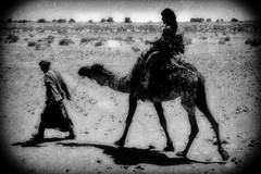 007 (StefanoMassai) Tags: travel desert morocco tribes marocco viaggio nomads deserto tuareg nomadic trib nomadi