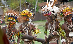 Tufi dancers (Sven Rudolf Jan) Tags: dancers singing traditional drumming papuanewguinea headdresses tufi