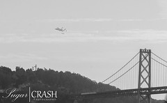Endeavor (OmegaMoth) Tags: sanfrancisco california blackandwhite bw white black history monochrome blackwhite nikon time monochromatic event dslr spaceshuttle endeavor spaceshuttleendeavor d7000 nikond7000