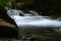 DSC_9309 (Luella Maria) Tags: falls waterfalls decew