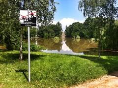 08.06.2013: im Klosterbergegarten (zwischen 11:45 und 13:00 Uhr).