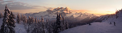 Cypress Matte Painting (cavematty) Tags: illustration mattepainting matthewrodgers cavematty