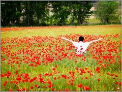 Feliz Cumpleaos Luis!!! (RosanaCalvo) Tags: espaa naturaleza verde primavera persona rojo europa guadalajara luis trillo ayudante campodeamapolas