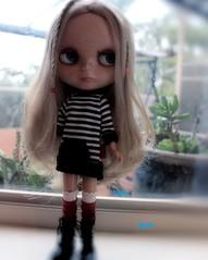 Luna Celeste's new faceup.