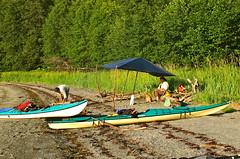 Tarp for the sun (The Cabin On The Road) Tags: alaska kayak kayaking seakayak seakayaking bernersbay alaskaseakayaking tongassforest