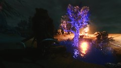 Sleeping Tree ... (tend2it) Tags: game texture monster pc screenshot mod kate xbox v pack rpg immersive elder creatures mods selene enb dlc scrolls ps3 kenb secv skyrim sweetfx tesv